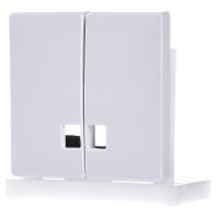 413519-wippe-symbol-fenster-pws-fur-serienschalter-413519-aktionspreis