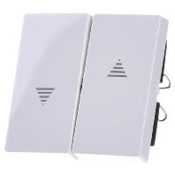 432419-wippe-pws-gl-f-schalter-taster-432419-aktionspreis