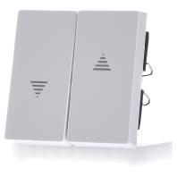 432425-wippe-aws-gl-f-schalter-taster-432425-aktionspreis