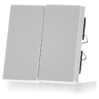 432519-wippe-pws-gl-fur-serienschalter-432519-aktionspreis