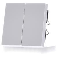 432525-wippe-aws-gl-fur-serienschalter-432525-aktionspreis
