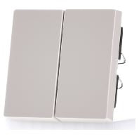 432544-wippe-ws-gl-fur-serienschalter-432544-aktionspreis
