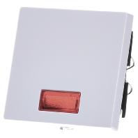 432819-wippe-symbol-fenster-pwsgl-rechteckig-432819-aktionspreis