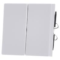 433519-wippe-pws-fur-serienschalter-433519-aktionspreis