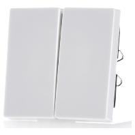 434519-wippe-pws-fur-serienschalter-434519-aktionspreis