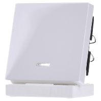 436025-wippe-kontr-fenster-aws-gl-f-schal-tast-einsatz-436025-aktionspreis