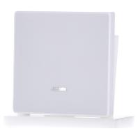 438019-wippe-kontr-fenster-pws-f-schal-tast-einsatz-438019-aktionspreis