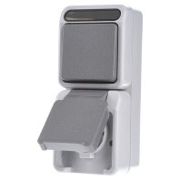 MEG3495-8029 Combination switch-wall socket outlet MEG3495-8029, special offer