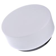 21101.003 - Opalglasleuchte opal-mt sw A60 75W 21101.003