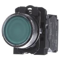 xb5aw33b5-leuchtdrucktaster-gn-led-modul-24v-1s-1o-xb5aw33b5, 17.04 EUR @ eibmarkt