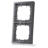 5TG1322-1 Frame 2-gang platinum 5TG1322-1