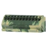 812-100 (10 Stück) - PE-Sammelschienenblock 4qmm gn-ge 812-100