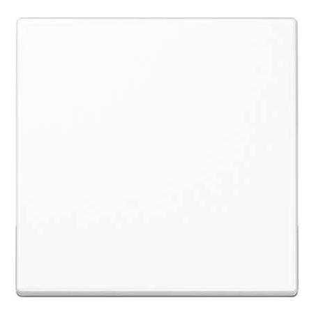 Jung Wippe Symbol LICHT alpinweiß für Taster AS 591 L WW aws