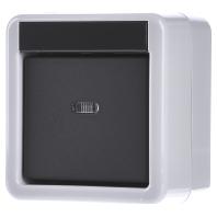 eib knx taster busankoppler 1fach wassergeschtzt ip44 aufbaumontage 515130. Black Bedroom Furniture Sets. Home Design Ideas
